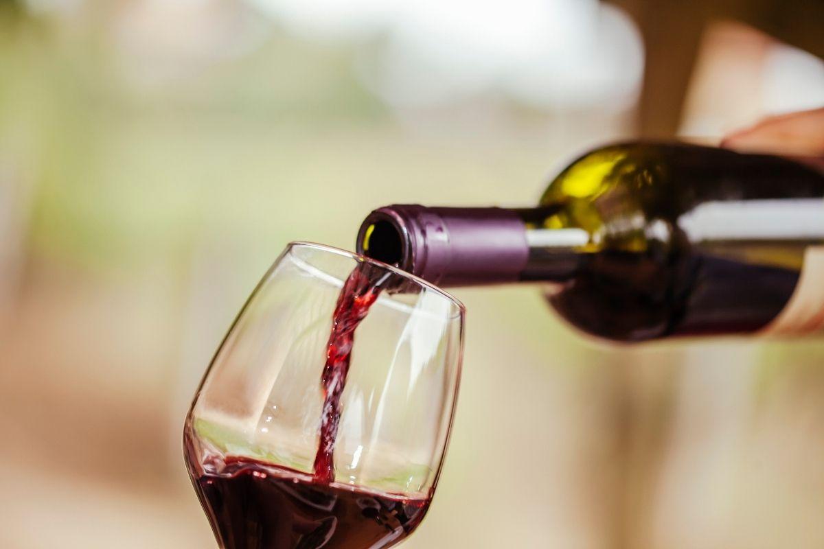 5 grandes vinos por menos de 5 euros